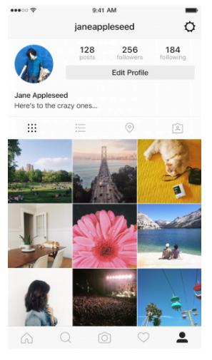 capture d'écran profil instagram utilisateur